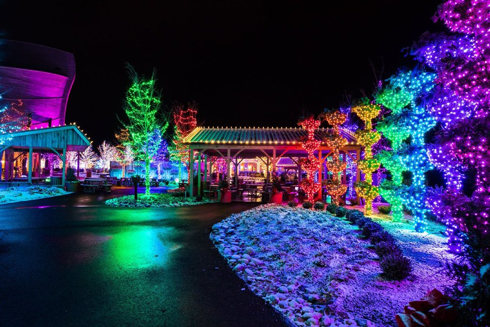 Christmas Time Rainbow Gardens