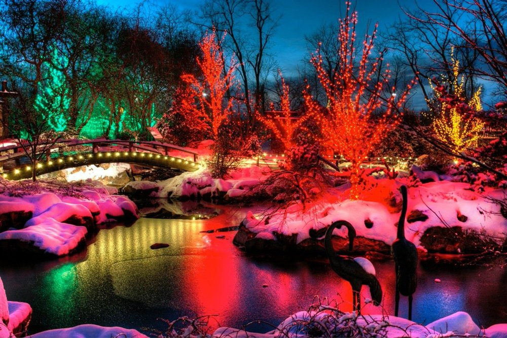 ChristmasTown Asian Garden