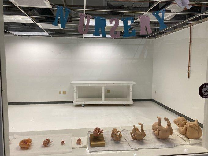 Creation Museum New Exhibit