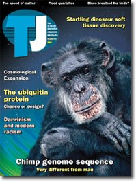 TJ 19(3)
