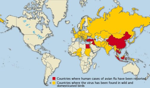 Map of countries in which bird flu has been detected