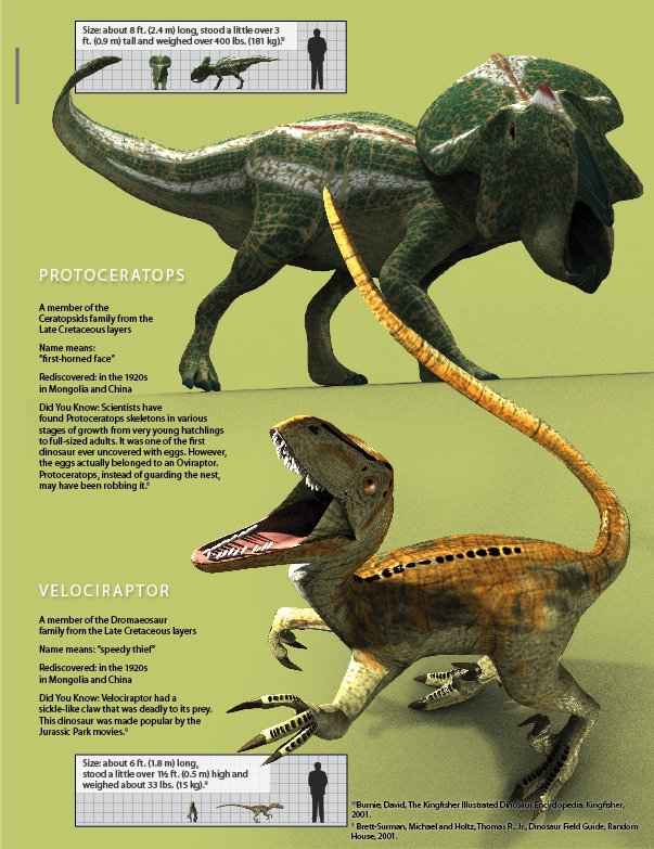 Protoceratops and Velociraptor