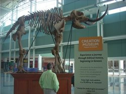 A 12-foot mastodon skeleton