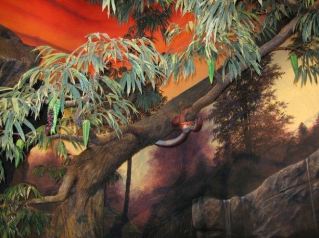 Serpent in Tree