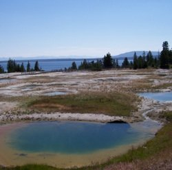 Numerical Simulation of Precipitation in Yellowstone National Park with a Warm Ocean: Continuous Zonal Flow, Gulf of Alaska Low, and Plunging Western Low Case Studies