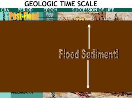 Rock Layers in Light of Noah's Flood