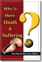 Why Does God Allow Suffering and Death?