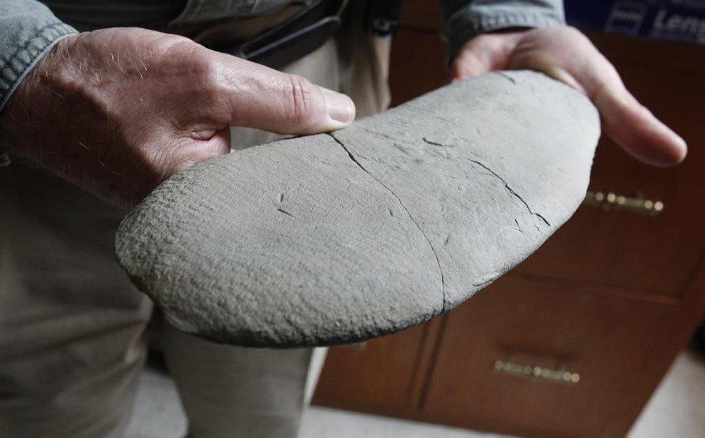 David Meyer Holding Fossil