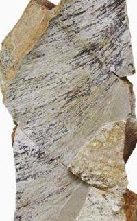 Fossilized filamentous structures