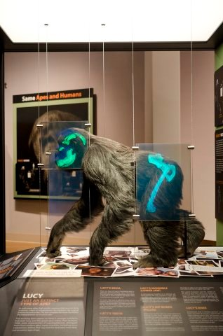 Stunning Exhibit Unveiled At Creation Museum Answers In