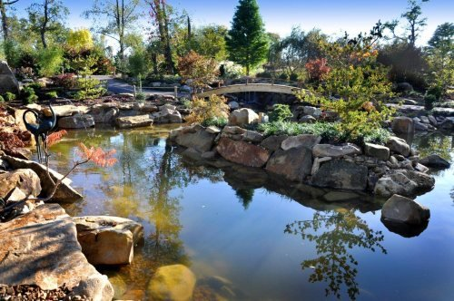 "What S Wrong With My Garden Pond Water: Always ""Evolving""—What's New At The Creation Museum"