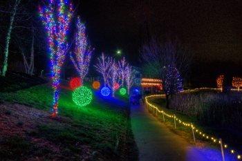 Lights on the Path