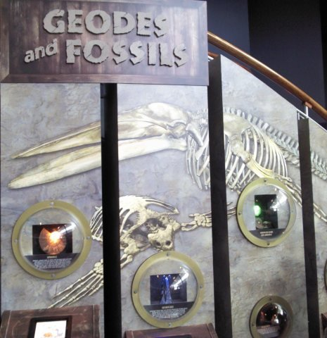 Geodes and Fossils