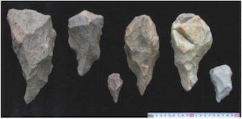 Homo Erectus Tools | www.pixshark.com - Images Galleries ...