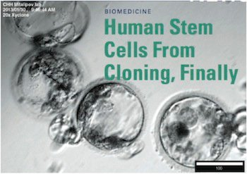 What does everyone think of Scientists trying to clone human embryos?