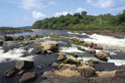 piranha-habitat