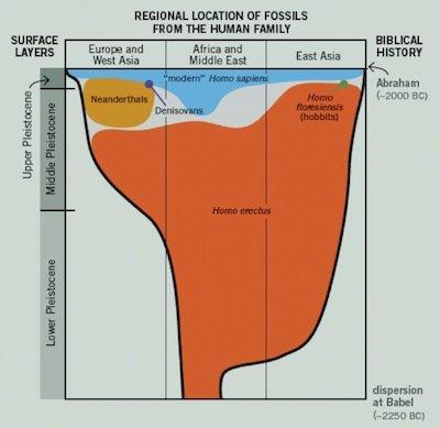 neanderthal chart 3