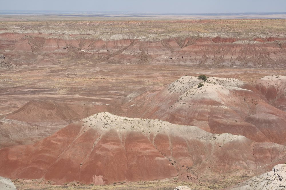 Chinle Formation from Painted Desert Overlook