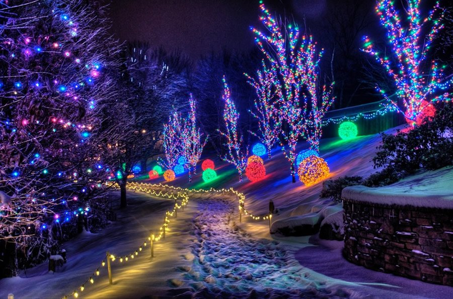 Christmas Lights at Creation Museum