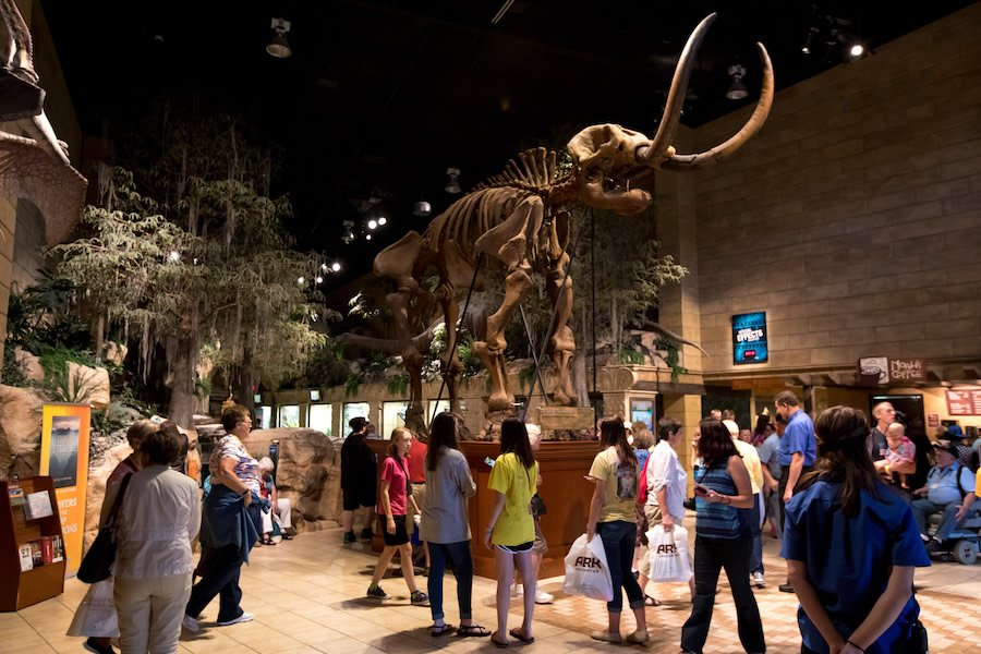Mastodon Casting in Main Hall of the Creation Museum