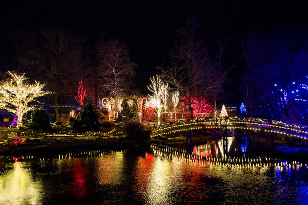 Garden of Lights at the Creation Museum