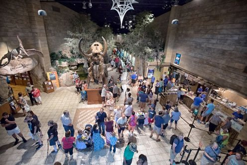 Guest in the Main Hall of the Creation Museum