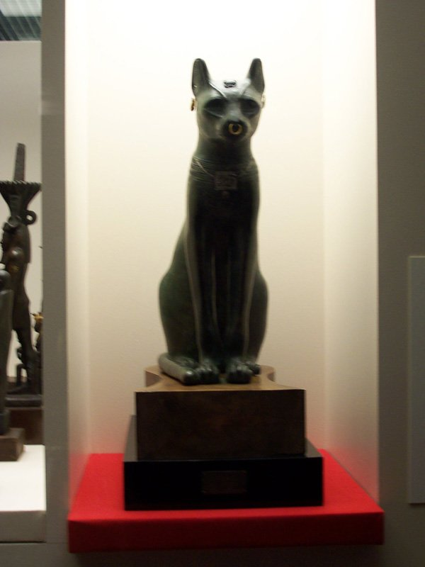 Representations of Bastet