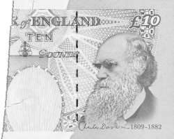 Darwin Ten-pound Note