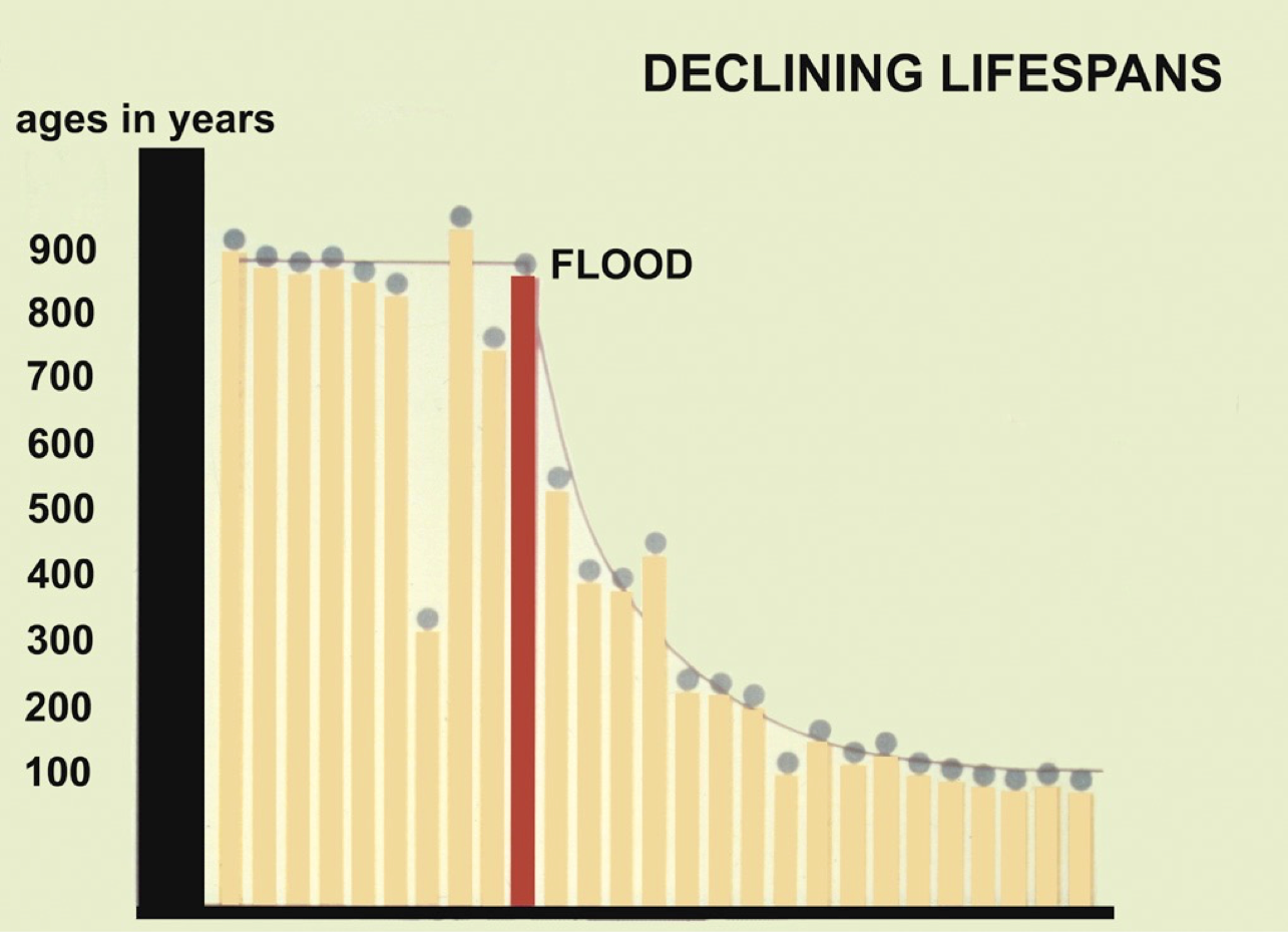 Declining Lifespans After the Flood
