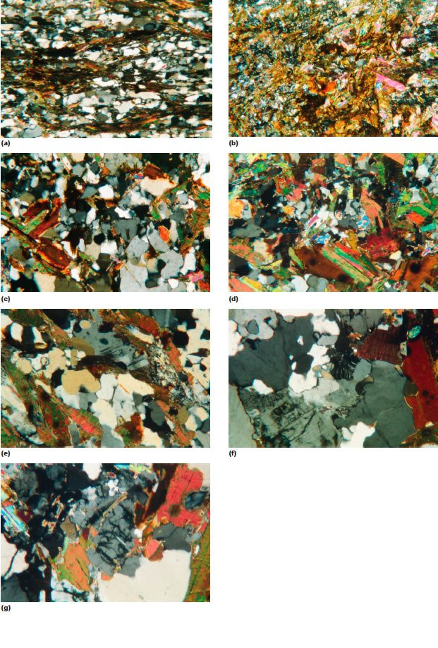 Representative photo-micrographs of the schists, gneisses, and granodiorite samples of the Cooma