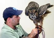 Dan Breeding with an owl