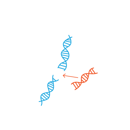 CRISPR replace