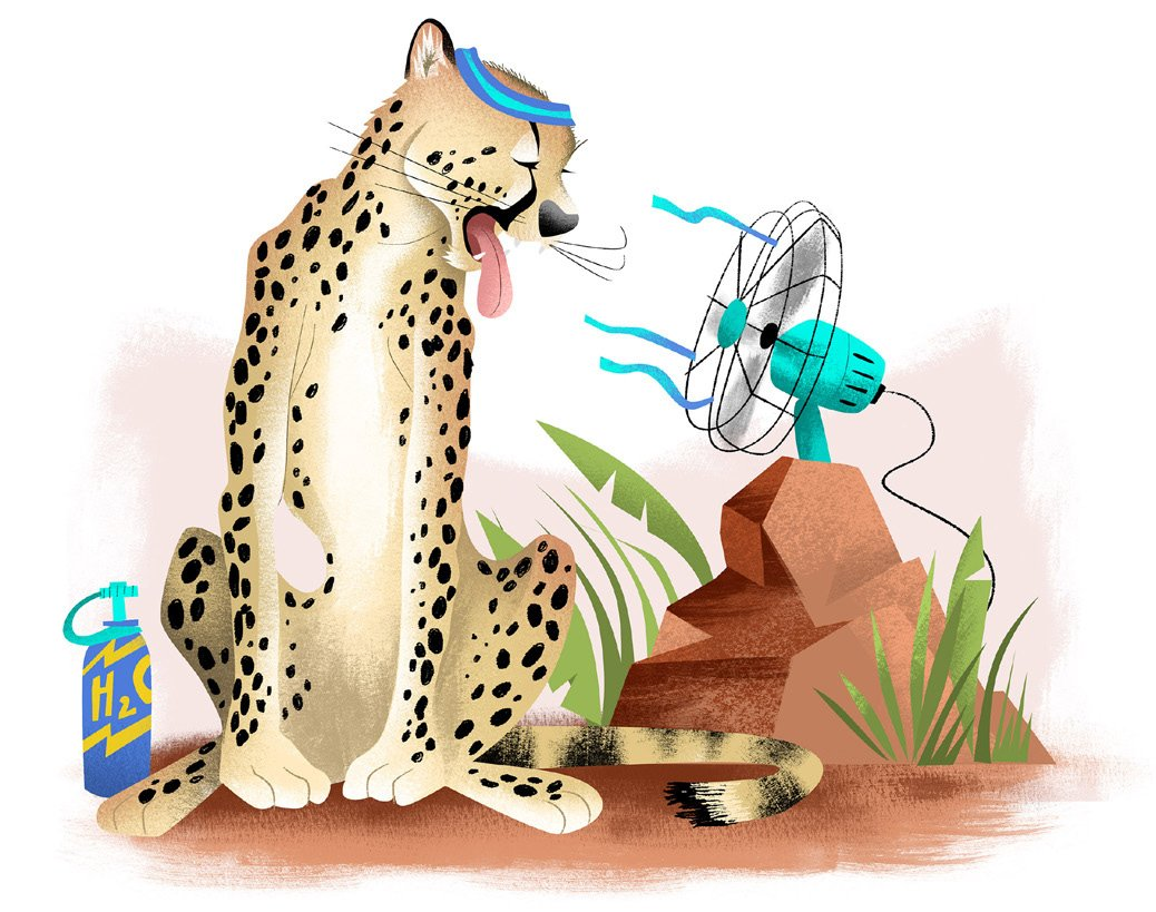 Cheetah Cooling