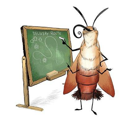 Moth Teacher