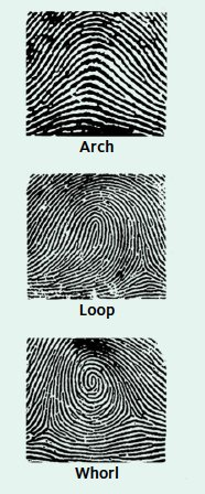 Three Patterns