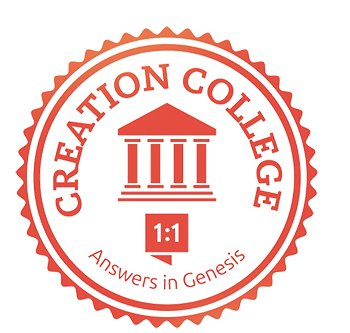 Creation Colleges