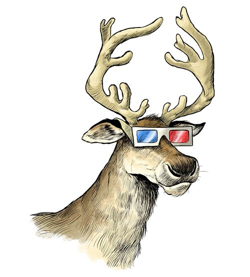 Reindeer Eyesight