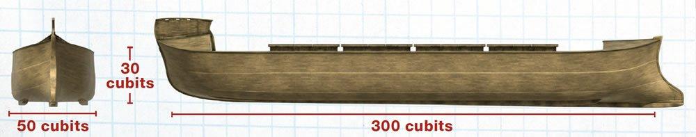 Ark dimensions