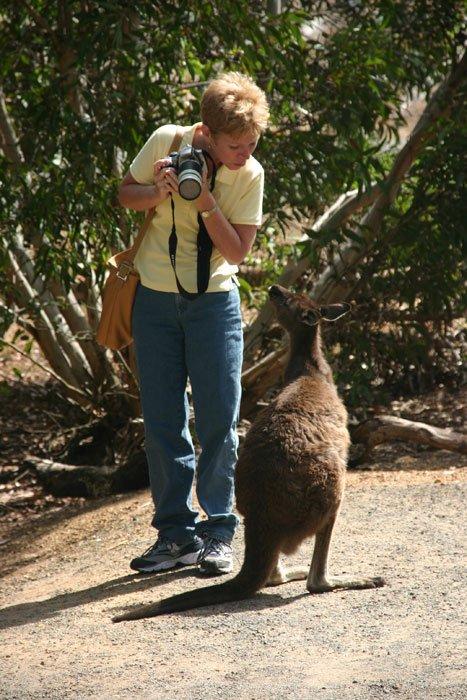 Debbie Werner with kangaroo