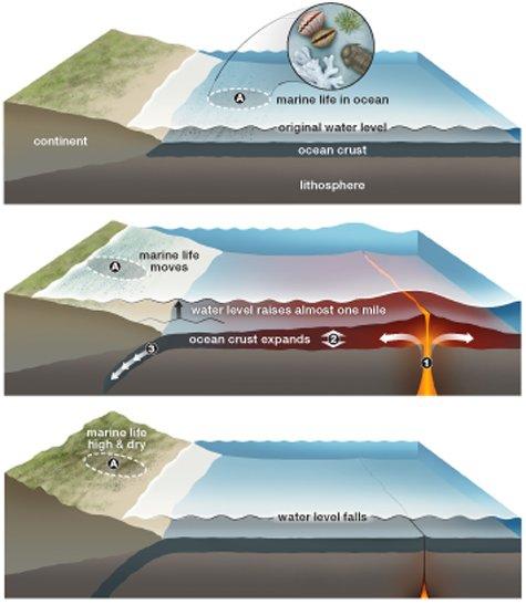 The Ocean Floor Rises