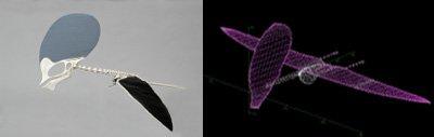 Pterodactyl Design