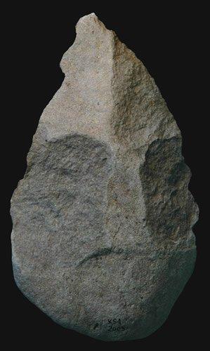 Homo erectus hand axe