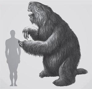 Megalonyx Size Comparison