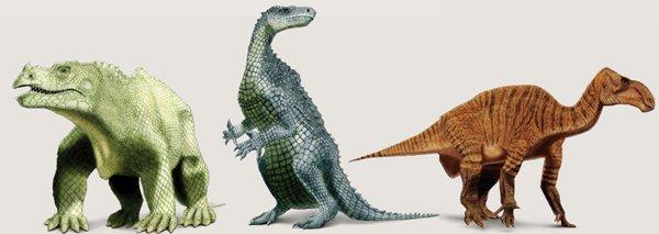 Iguanodon Drawings