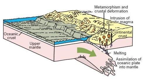 Oceanic plate