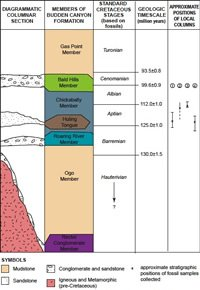 Diagrammatic classification of the members of the Budden Canyon formation