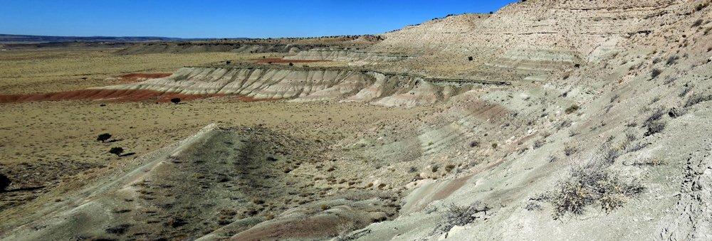Bidahochi Formation Lake Beds