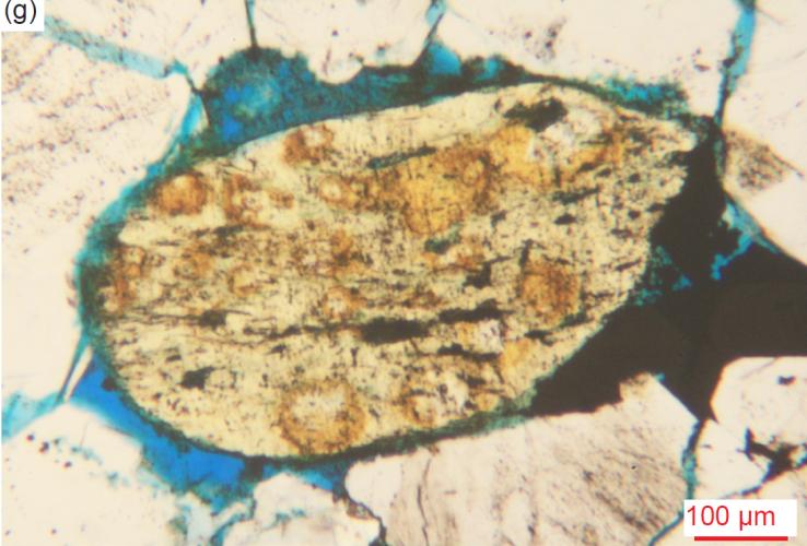 Figure 30g
