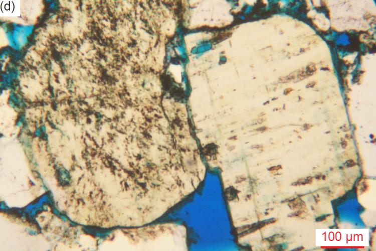 Figure 31d