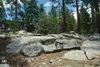 (d) Granodiorite of Illilouette Creek, near Tioga Road (sample RYG-19)
